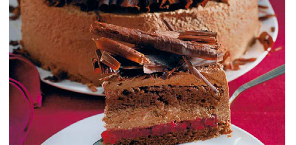 Čokoladna torta s brusnicama